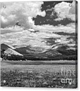 Valley In Yosemite Acrylic Print