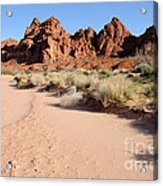 Valley Of Fire Wash Acrylic Print by Gary Whitton