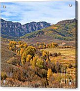 Valley Of Gold Acrylic Print