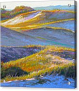 Valley Of The Dunes Acrylic Print by Ed Chesnovitch