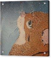 Van Goghs Cat Acrylic Print