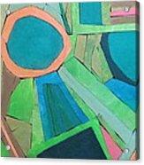 Variation Acrylic Print by Diane Fine