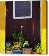 Vases On The Doorway Acrylic Print