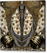Vast Knowledge I Acrylic Print by Betsy Knapp