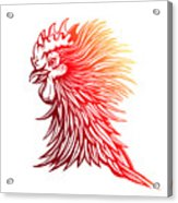 Vector Red Rooster Head Illustration Acrylic Print