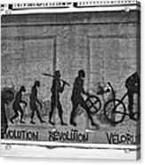 Velorution Acrylic Print