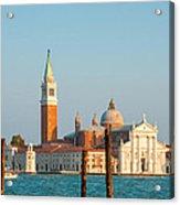 Venetian Dove Acrylic Print
