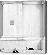 Venetian Rest Acrylic Print