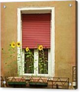Venice Italy Yellow Flowers Red Shutter Acrylic Print