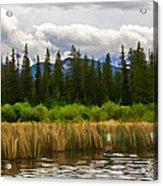 Vermilion Lakes Acrylic Print