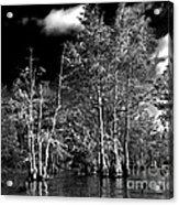 Vernon Lake Trip Acrylic Print