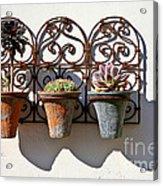 Vertical Cacti Garden Acrylic Print