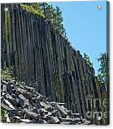 Vertical View Acrylic Print