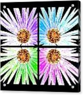 Vexel Flower Collage Acrylic Print