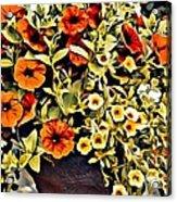 V.i. 0064 Acrylic Print
