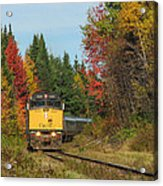 Fall Colours With Train Acrylic Print