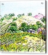 Viano Winery Martinez California Acrylic Print