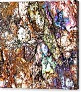 Vibra 1 Acrylic Print