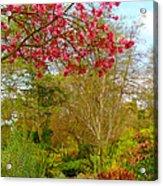 Vibrant Garden  Acrylic Print