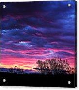 Vibrant Sunrise Acrylic Print by Tim Buisman