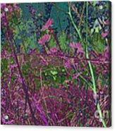 Victorian Noise 1 Acrylic Print