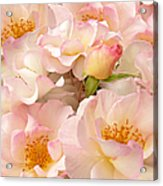 Victorian Pink Roses Bouquet Acrylic Print