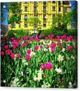 Vienna Residence Acrylic Print