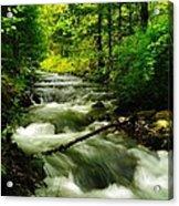 Viento Creek In June Acrylic Print