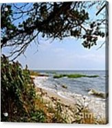 View At East Point  Acrylic Print