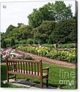 View From A Bench Acrylic Print