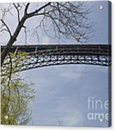 View From Below Acrylic Print