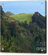 View From Nepenthe In Big Sur Acrylic Print