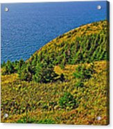 View From Skyline Trail In Cape Breton Highlands Np-ns Acrylic Print
