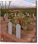 View Of Arizona From Boothill Cemetery Acrylic Print