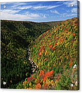 View Of Blackwater Canyon In Autumn Acrylic Print