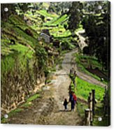 View Of Lupaxi Acrylic Print