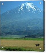 View Of Mount Ararat In Turkey Acrylic Print