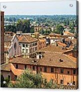 View Of Pietrasanta Acrylic Print