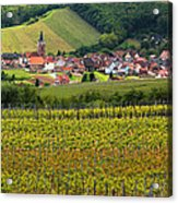 View Of Rodern From The Vineyards Of Alsace Acrylic Print