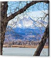 View Through The Trees To Longs Peak Acrylic Print