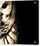 Vigilant In Darkness Acrylic Print