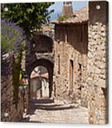 Village Lane Acrylic Print