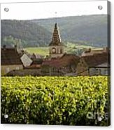 Village Of Monthelie. Burgundy. France Acrylic Print