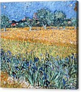 Field With Flowers Near Arles Acrylic Print