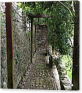 Vine-covered Passage Acrylic Print