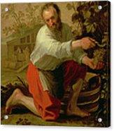 Vine Grower, 1628 Oil On Canvas Acrylic Print