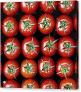 Vine Tomato Pattern Acrylic Print