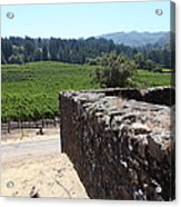 Vineyard And Winery Ruins At Historic Jack London Ranch In Glen Ellen Sonoma California 5d24537 Acrylic Print