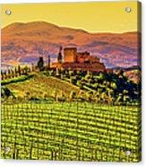 Vineyard In Tuscany Acrylic Print