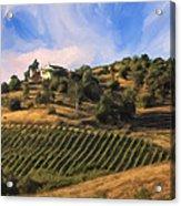 Vineyard Near Avila Beach Acrylic Print